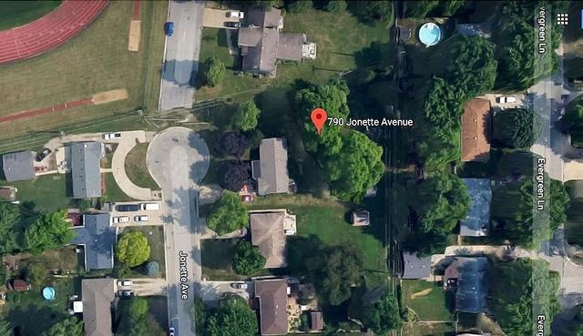 790 Jonette Avenue, Bradley, IL 60915 (MLS #09855493) :: The Dena Furlow Team - Keller Williams Realty