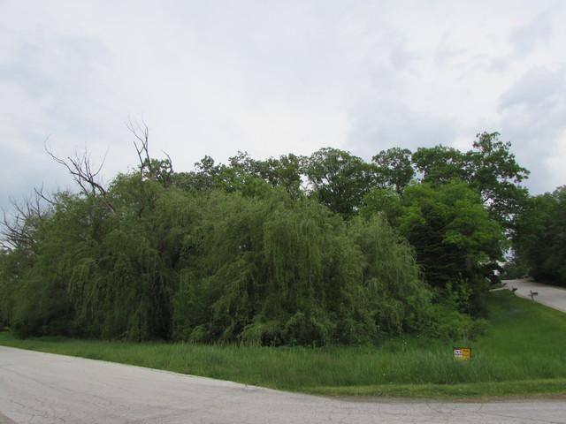 Lot 53 Nottingham Drive, Elburn, IL 60119 (MLS #09856236) :: Lewke Partners