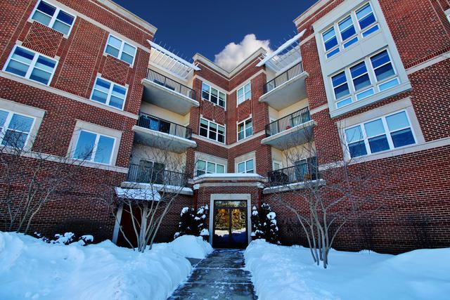 310 E Church Street #104, Libertyville, IL 60048 (MLS #09856627) :: Helen Oliveri Real Estate