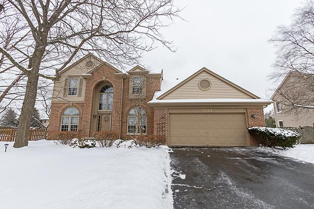 1507 Dogwood Drive, Crystal Lake, IL 60014 (MLS #09856831) :: The Jacobs Group