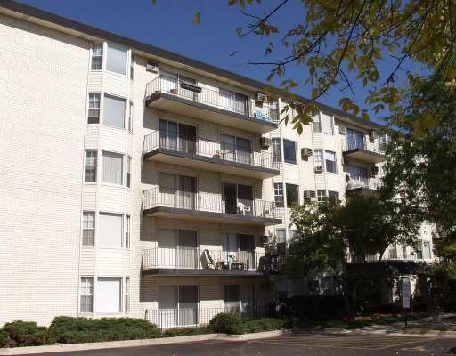 5510 Lincoln Avenue #308, Morton Grove, IL 60053 (MLS #09856971) :: Helen Oliveri Real Estate