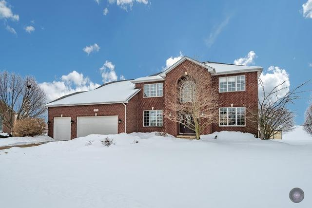 13256 Sunderlin Road, Plainfield, IL 60585 (MLS #09857624) :: Lewke Partners