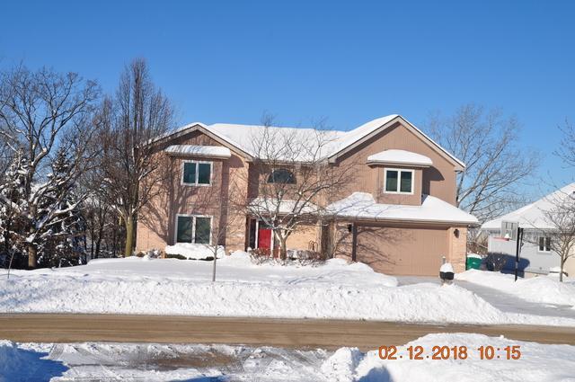 528 Carriage Ridge Lane, Lemont, IL 60439 (MLS #09857657) :: Baz Realty Network | Keller Williams Preferred Realty