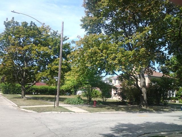 6600 Kilpatrick Avenue, Lincolnwood, IL 60712 (MLS #09857744) :: Lewke Partners