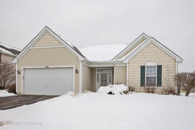 104 S Palmer Drive, Bolingbrook, IL 60490 (MLS #09857985) :: The Dena Furlow Team - Keller Williams Realty