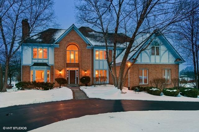 22955 N Foxtail Drive, Kildeer, IL 60047 (MLS #09858954) :: Helen Oliveri Real Estate