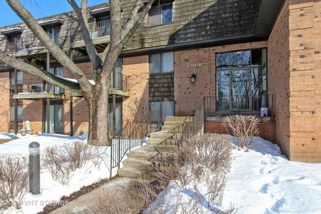 4 Oak Creek Drive #1509, Buffalo Grove, IL 60089 (MLS #09859041) :: Helen Oliveri Real Estate