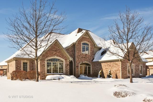 22692 Granite Drive, Frankfort, IL 60423 (MLS #09859141) :: Baz Realty Network   Keller Williams Preferred Realty