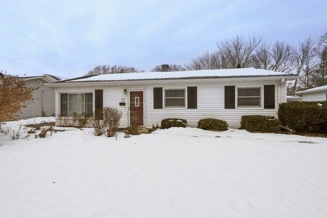 316 N Emerald Avenue, Mundelein, IL 60060 (MLS #09859286) :: Helen Oliveri Real Estate