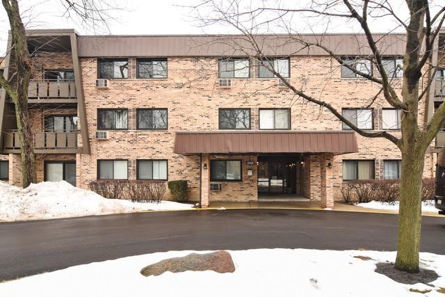 2604 N Windsor Drive #102, Arlington Heights, IL 60004 (MLS #09859401) :: Helen Oliveri Real Estate