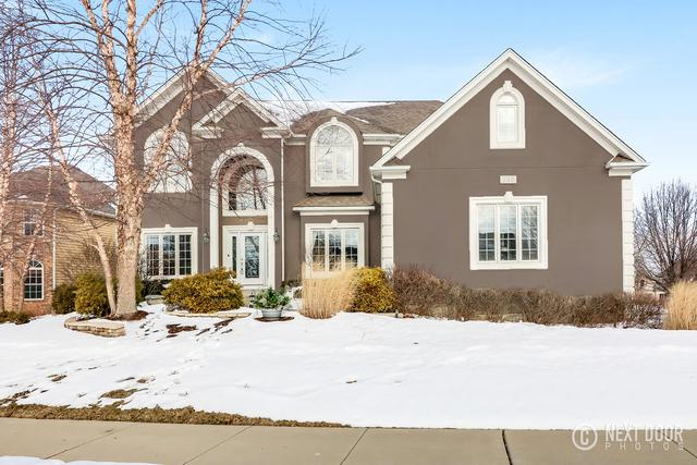 735 Woodbury Court, Sugar Grove, IL 60554 (MLS #09859979) :: The Jacobs Group