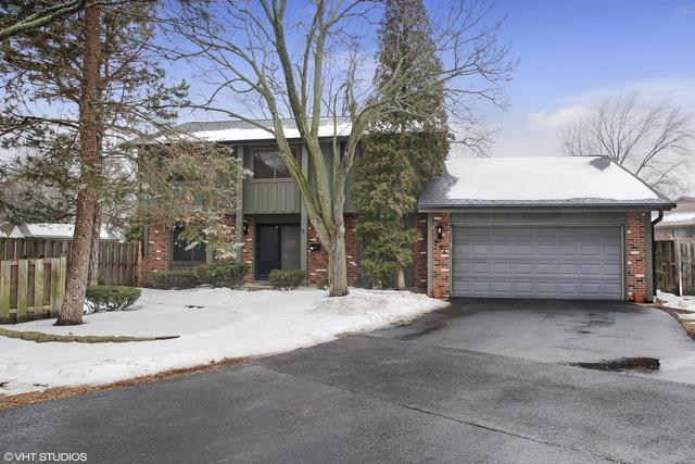 584 Lakeview Court, Roselle, IL 60172 (MLS #09860147) :: The Jacobs Group