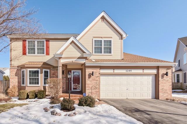 1245 N Springwood Drive, Palatine, IL 60074 (MLS #09860333) :: Helen Oliveri Real Estate