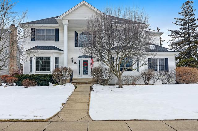 392 N Pondview Drive, Palatine, IL 60067 (MLS #09860342) :: Baz Realty Network | Keller Williams Preferred Realty