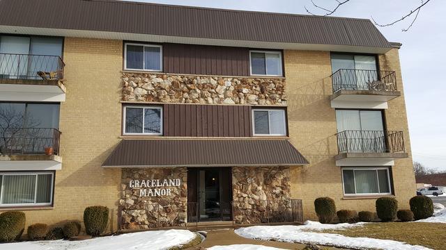 915 Graceland Avenue 2F, Des Plaines, IL 60016 (MLS #09860410) :: Helen Oliveri Real Estate