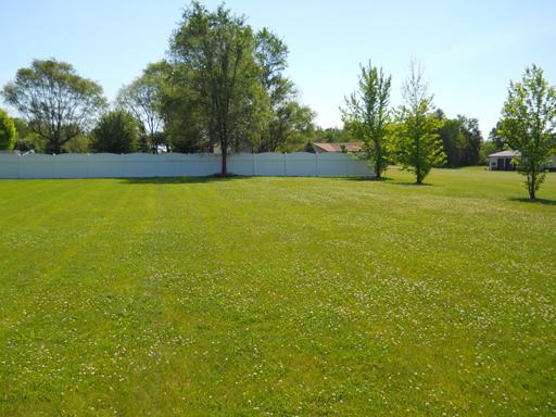 33 & 34 N Greenwood Street, Spring Valley, IL 61362 (MLS #09860573) :: Lewke Partners