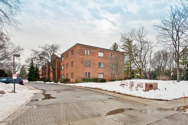 105 E Laurel Avenue #107, Lake Forest, IL 60045 (MLS #09861038) :: The Dena Furlow Team - Keller Williams Realty