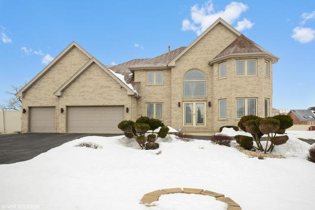 20584 Tyler Drive, Lynwood, IL 60411 (MLS #09861514) :: The Jacobs Group