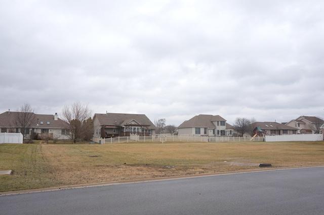1047 Hummingbird Lane, Peotone, IL 60468 (MLS #09861673) :: Lewke Partners