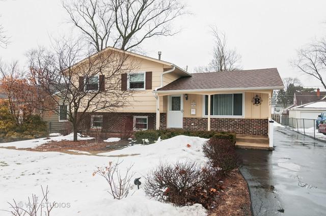 1323 Campbell Avenue, Wheaton, IL 60189 (MLS #09861689) :: The Dena Furlow Team - Keller Williams Realty