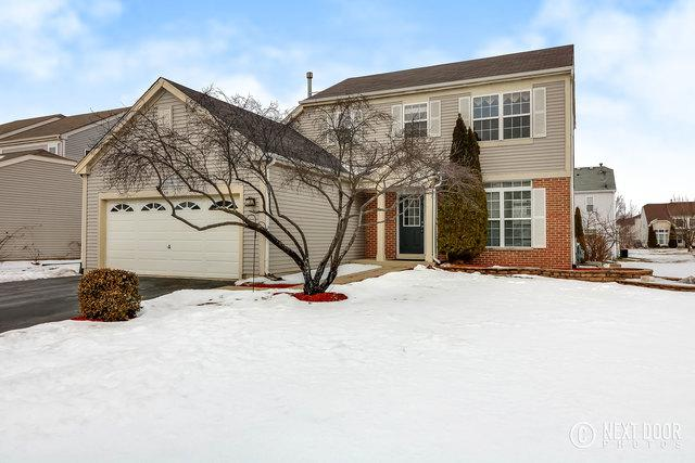 1606 Farmside Lane, Bolingbrook, IL 60490 (MLS #09861991) :: The Dena Furlow Team - Keller Williams Realty