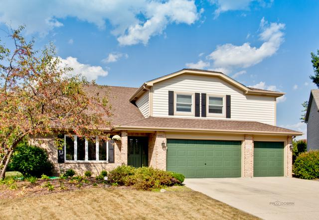 1112 Palmer Court, Crystal Lake, IL 60014 (MLS #09862007) :: Domain Realty