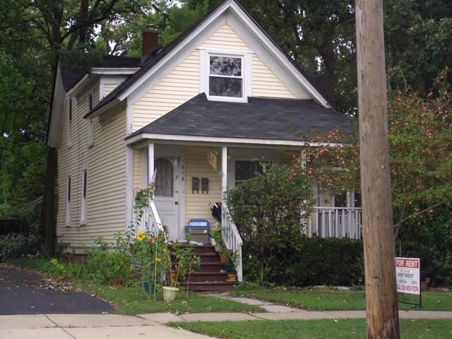 1216 Warren Avenue, Downers Grove, IL 60515 (MLS #09862302) :: MKT Properties | Keller Williams