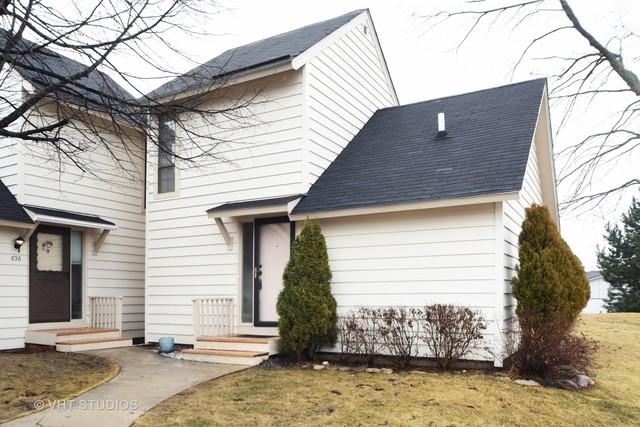 654 Mitchell Court, Gurnee, IL 60031 (MLS #09863306) :: Domain Realty