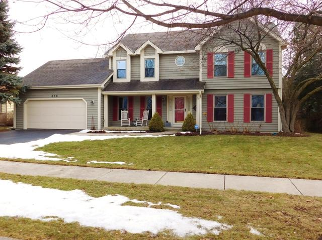 316 Stoneleigh Lane, Oswego, IL 60543 (MLS #09863435) :: The Dena Furlow Team - Keller Williams Realty