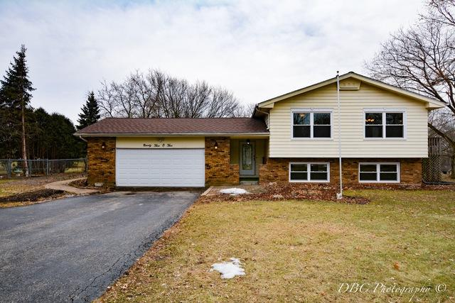 9505 Elm Lane, Crystal Lake, IL 60014 (MLS #09863849) :: Lewke Partners