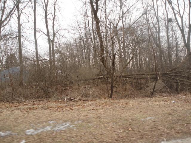 1317 Sheridan Road, Winthrop Harbor, IL 60096 (MLS #09863999) :: Helen Oliveri Real Estate
