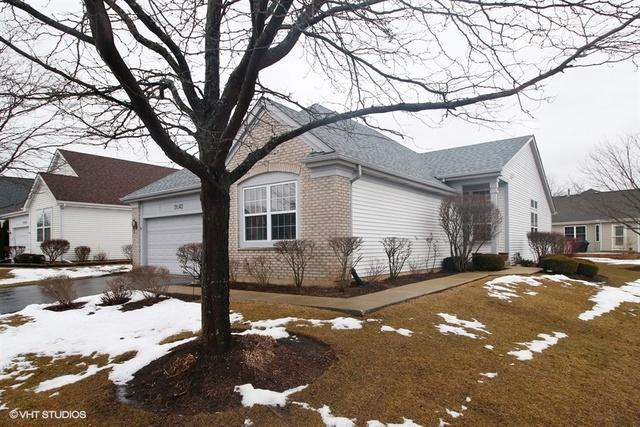 21562 W Chestnut Lane, Plainfield, IL 60544 (MLS #09864169) :: The Wexler Group at Keller Williams Preferred Realty