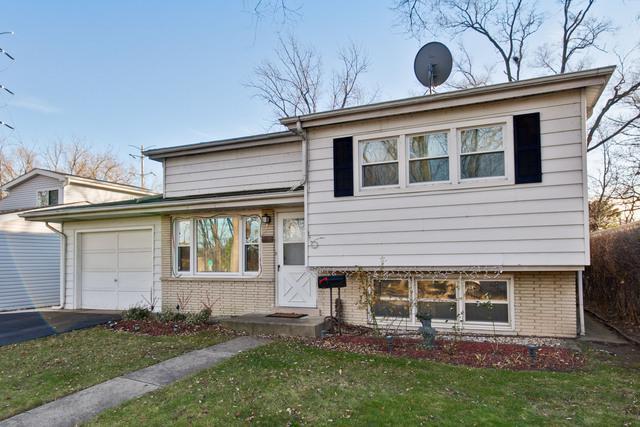 319 Park Drive, Northbrook, IL 60062 (MLS #09864306) :: The Dena Furlow Team - Keller Williams Realty