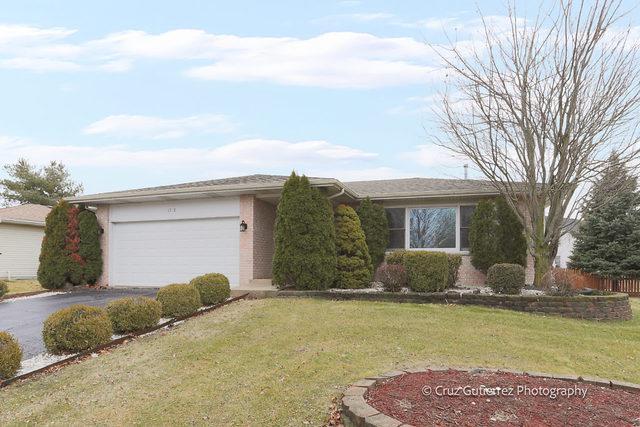 1743 Apple Valley Road, Bolingbrook, IL 60490 (MLS #09864381) :: The Dena Furlow Team - Keller Williams Realty