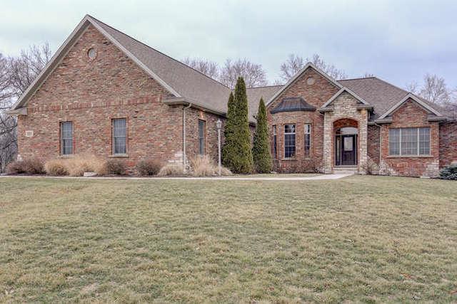 1508 Riverwood, Mahomet, IL 61853 (MLS #09864789) :: Littlefield Group