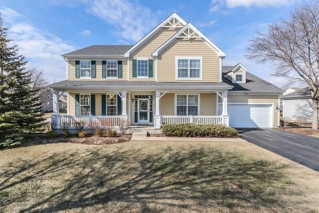 212 Atwell Street, Elgin, IL 60124 (MLS #09864973) :: The Dena Furlow Team - Keller Williams Realty