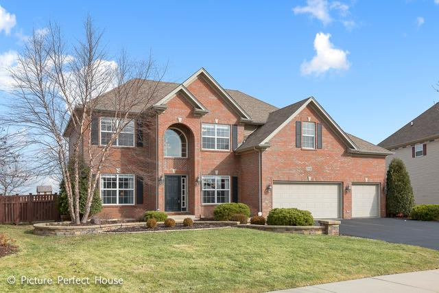 26840 Basswood Circle, Plainfield, IL 60585 (MLS #09865012) :: The Wexler Group at Keller Williams Preferred Realty
