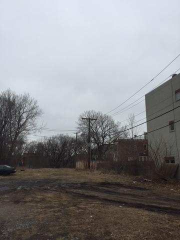3853 W Grenshaw Street, Chicago, IL 60624 (MLS #09865089) :: The Dena Furlow Team - Keller Williams Realty