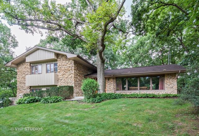 24509 W Guinevere Lane, Joliet, IL 60404 (MLS #09865144) :: The Wexler Group at Keller Williams Preferred Realty