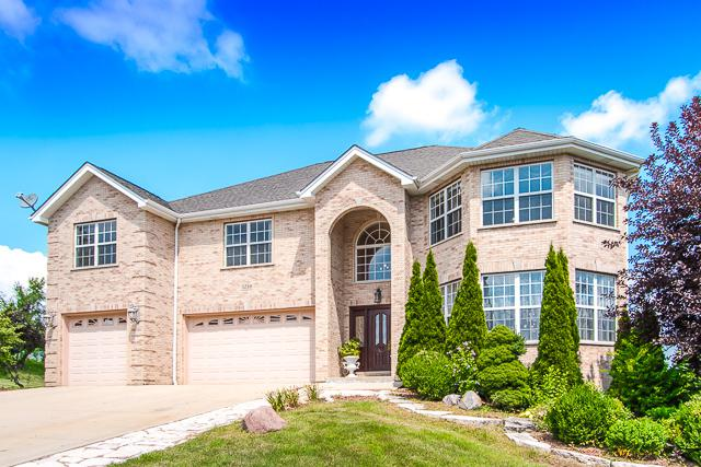 5210 Harry Court, Crystal Lake, IL 60014 (MLS #09865749) :: Ani Real Estate