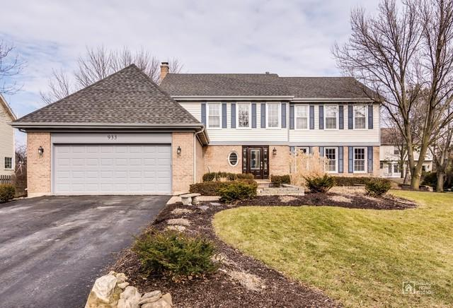 933 Rosewood Avenue, Naperville, IL 60563 (MLS #09865751) :: Ani Real Estate