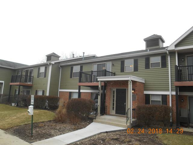 1573 Raymond Drive #201, Naperville, IL 60563 (MLS #09865785) :: The Dena Furlow Team - Keller Williams Realty