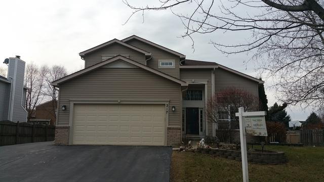 217 Jonathan Way E, Bolingbrook, IL 60490 (MLS #09865870) :: Littlefield Group