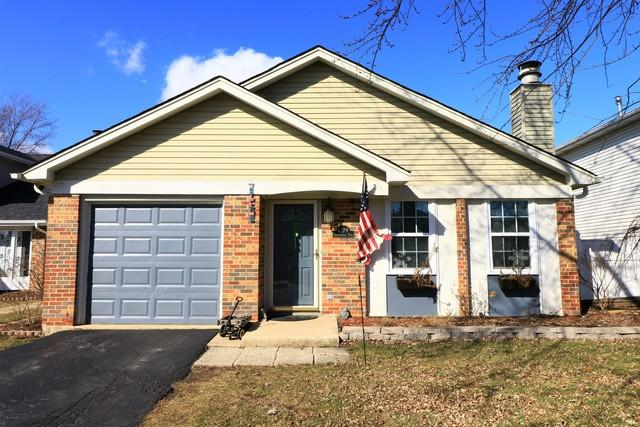 1279 Chattanooga Trail, Carol Stream, IL 60188 (MLS #09867017) :: The Jacobs Group