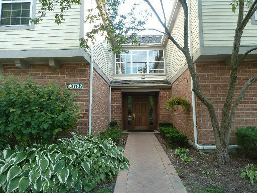 1757 Eastwood Court #8, Schaumburg, IL 60195 (MLS #09867309) :: Domain Realty