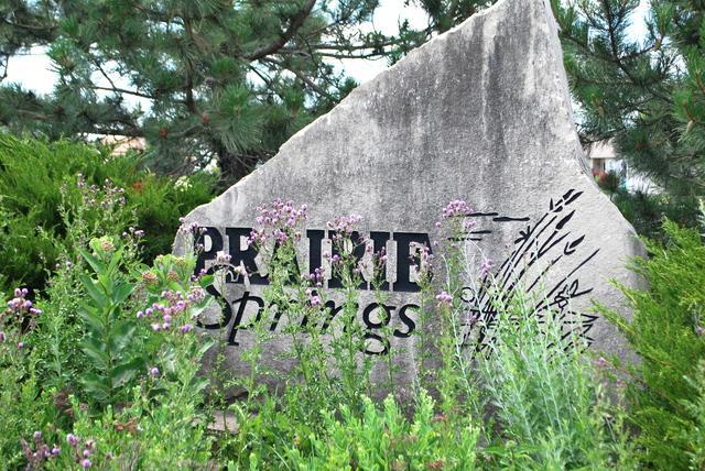 734 Prairie Pond Circle, Malta, IL 60150 (MLS #09867827) :: The Dena Furlow Team - Keller Williams Realty