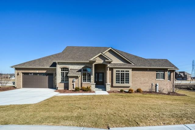 20711 Grays Reef Court, Frankfort, IL 60423 (MLS #09870347) :: The Jacobs Group