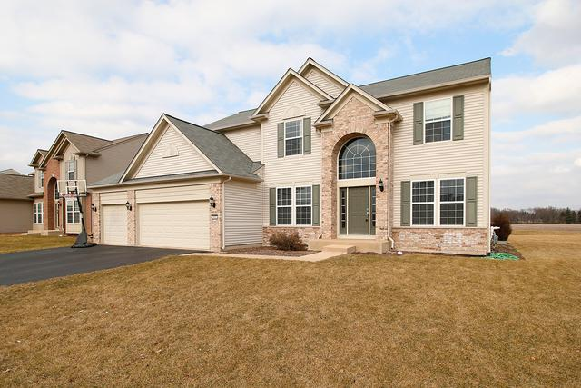 2402 Emerald Lane, Yorkville, IL 60560 (MLS #09870364) :: The Jacobs Group