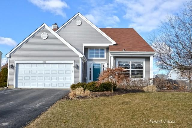 1538 Crabtree Lane, Crystal Lake, IL 60014 (MLS #09870974) :: The Jacobs Group
