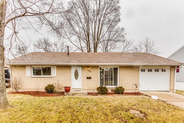 723 Dexter Avenue, Romeoville, IL 60446 (MLS #09871059) :: The Jacobs Group